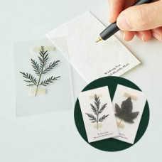 Ботанический зимний набор для ухода за волосами BOTANIST Увлажняющий