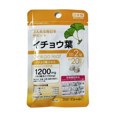 Ginkgo Leaf Daiso - при повышенных умственных нагрузках