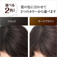Окрашивающий лак для объёма волос Hair Moment Ebis
