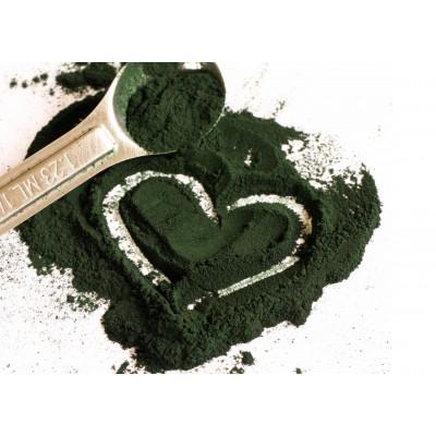 Полезные свойства спирулины — сине-зелёной водоросли