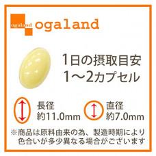 Протеогликан Ogaland
